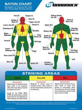 Monadnock Baton Trauma Zone Chart
